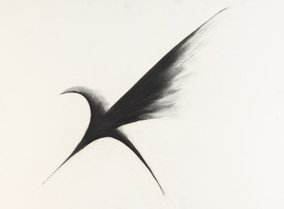 Flight VII