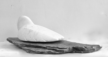 Nesting Bird - Bridget McCrum pic.jpeg