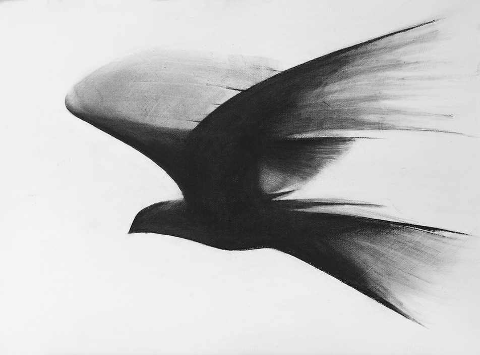 Flock III
