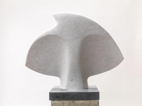 Shell Bird