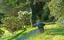Garden installation.