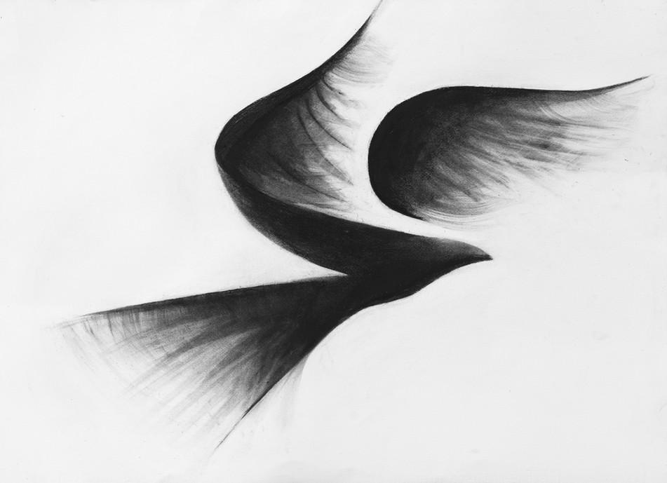 Flock II