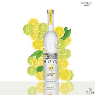 Belevedere Vodka ad - Illustration studio work