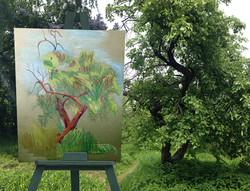 Пленэр. Дерево