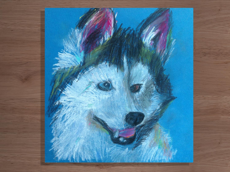 Портрет любимой собаки. Хаски