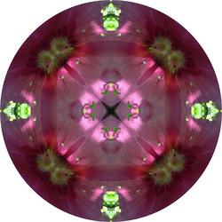 Kaleidoskop50 Kopie 2