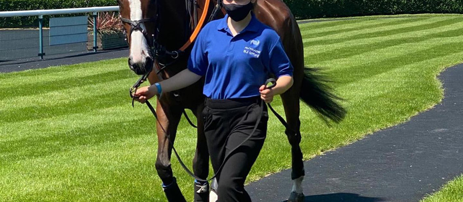 23rd June - Stable News