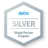 Datto Silver.png