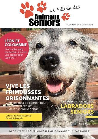 le-bulletin-des-animaux-séniors-2019.jpg