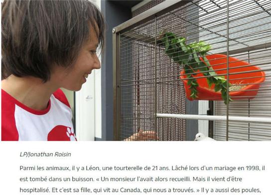 Version web : Léon