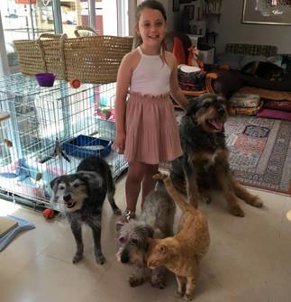 Lana, notre junior, avec Fifille, Téo, Didi et Ragnar
