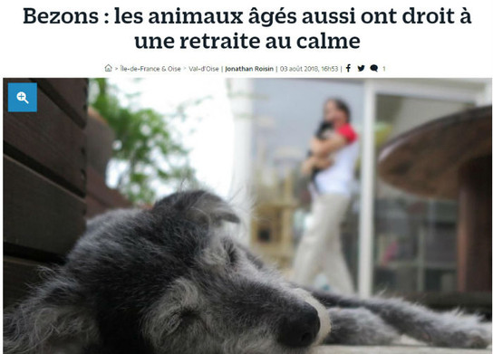 Version web : Fifille