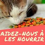 Appel aux dons nourriture picto.jpg