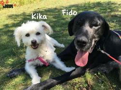 Fido et Kika
