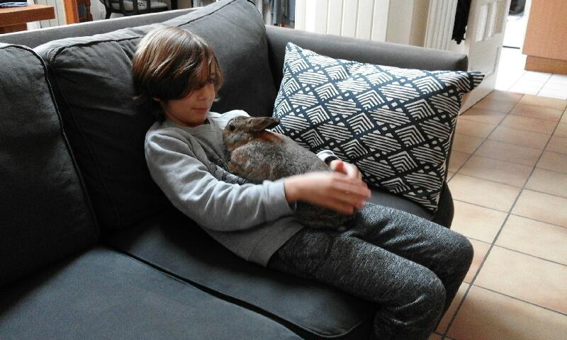 Loupi a un nouvel ami