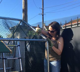 Carolina lors du montage d'un enclos