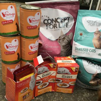 Don de nourriture pour chats