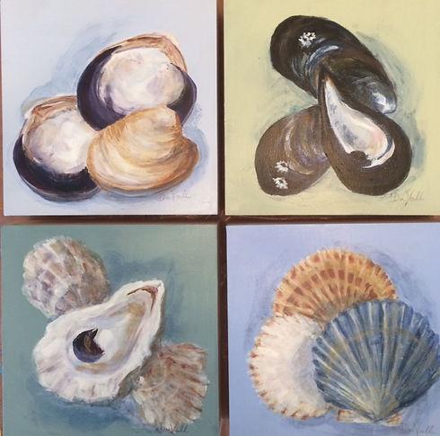 New Shells 2020 8x8 $150. ea..jpg