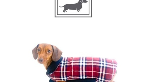 Sausage Dog Box, Dachshund Reversible Plaid Coat Red
