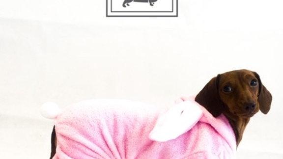 Sausage Dog Box, Cute Dachshund Bunny Outfit