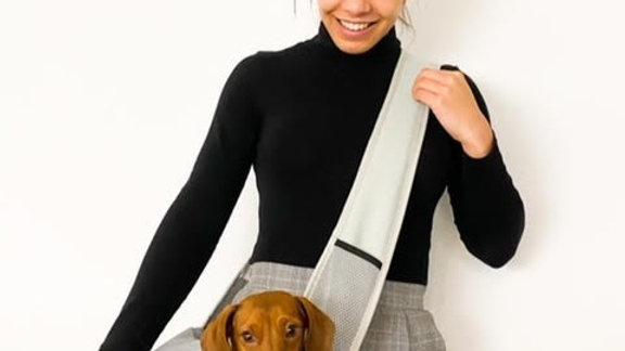 Sausage Dog Box Pet Sling Carrier - Grey