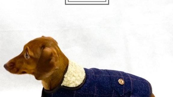 Sausage Dog Box, Dachshund Margo Tweed Coat for Dachshund, Sausage Dog