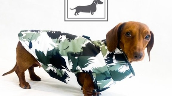 Sausage Dog Box Waterproof Patterned Puffer Coat