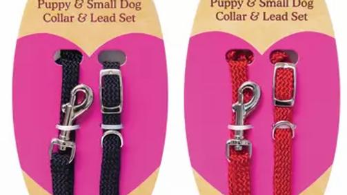 Sausage Dog Box Puppy Collar and Lead Set