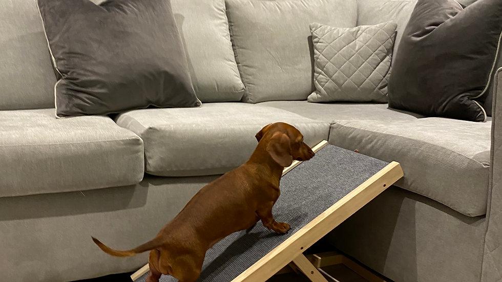 Sausage Dog Box Standard Dachshund Ramp - Adjustable