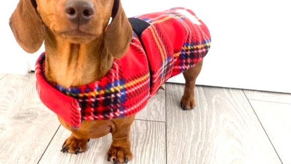 Sausage Dog Box Designer Fleece Waterproof 'Tartan' Dachshund Coat