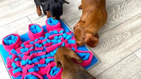 Sausage Dog Box Square Snuffle Mat