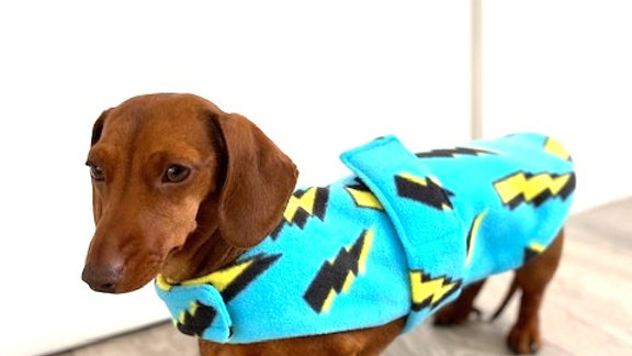Sausage Dog Box Designer Fleece Waterproof 'Lightning Bolt' Coat