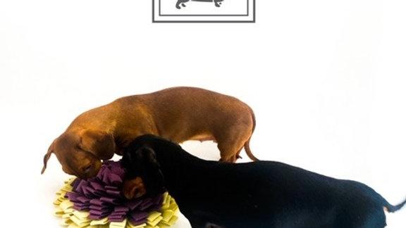 Sausage Dog Box, Dachshund Dachshund Anxiety Snuffle Mat