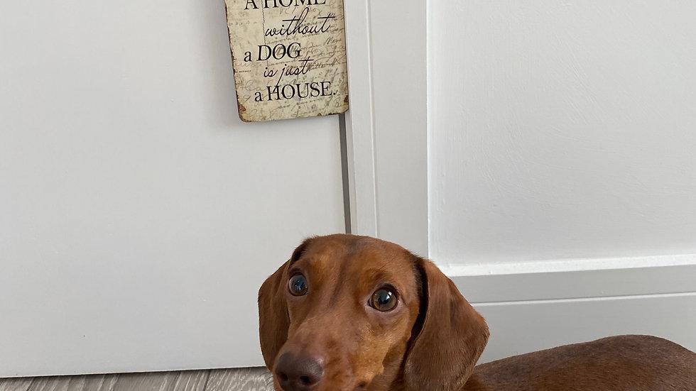 Sausage Dog Box, Dachshund Vintage Style Wood Effect Hanging Sign
