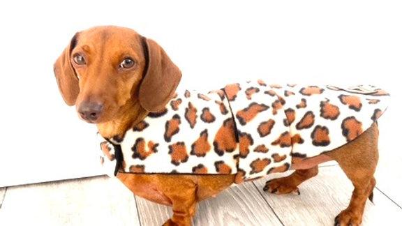 Sausage Dog Box Designer Fleece Waterproof 'Leopard' Dachshund Coat