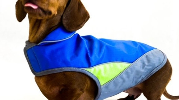 Sausage Dog Box, Dachshund Blue Reflective Waterproof Dog Coat