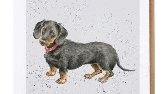 Sausage Dog Box, Dachshund Wrendale Hugo Sausage Dog Blank Card