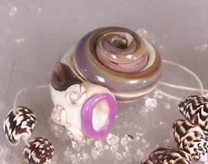 Shells 2006