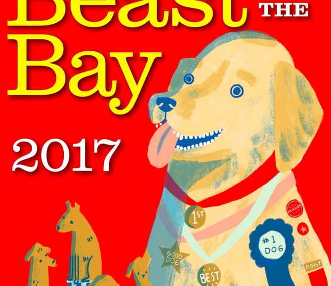 Best Dog Walker 2017 Award