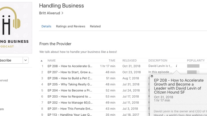Podcast guest episode: How to Accelerate Business Growth and Become a Leader with David Levin of Cit