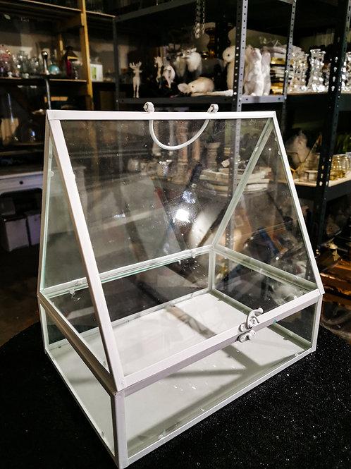 Stikla terārijs #MD33