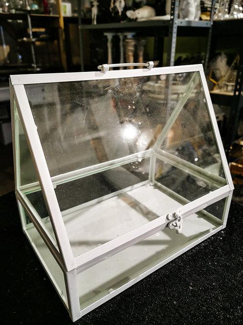 Stikla terārijs #MD34