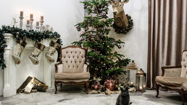 Roma Secret Garden ziemā