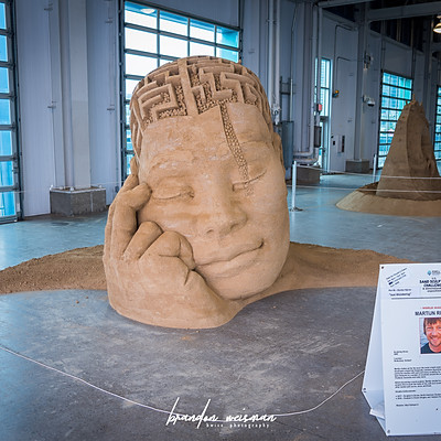 U.S. Sand Sculpting Challenge (San Diego)
