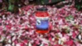 Strawberry-300x169.jpg