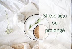 Gestion du stress aigu ou prolongé Marylène Jamaux Toulouse