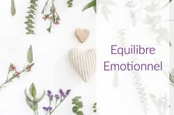 Equilibre émotionnel Marylène Jamaux Toulouse