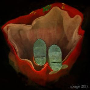 Edena Gladiola