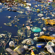 Polluted water