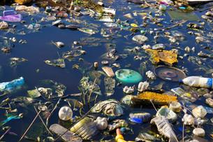 Microplastics: Reduce Your Impact